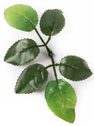Лист розы разм. 19 см