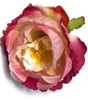 Голова пионовидной розы шелк 6 сл. диам. 10 см