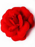 Голова розы бархат 4 сл. диам. 15,5 см