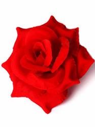 Голова розы бархат 4 сл. диам. 15 см